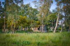 Pequeña choza sola destruida en bosque Fotografía de archivo