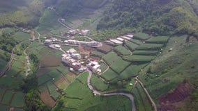 Pequeña ciudad con la plantación de té en área de montañas de Alishan, Taiwán Silueta del hombre de negocios Cowering almacen de metraje de vídeo