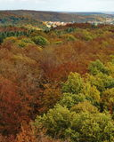 Pequeña ciudad en bosque del otoño Imagenes de archivo