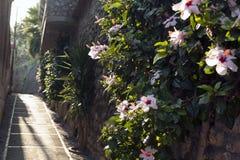 Pequeña ciudad italiana 6 de la playa Fotos de archivo