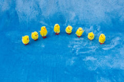 Pequeña colección del semicírculo de pequeños polluelos de Pascua del juguete del bebé fotografía de archivo