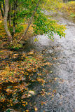Pequeña corriente con las hojas caidas por tiempo del otoño Imagenes de archivo