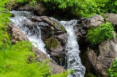 Pequeña corriente de la montaña de la cascada Fotografía de archivo