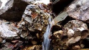 Pequeña corriente del río en primavera almacen de video