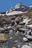Pequeña corriente en las montañas de la primavera Imagen de archivo