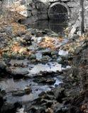 Pequeña corriente fangosa, área de la protección de Milner Imágenes de archivo libres de regalías
