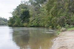 Pequeña ensenada en el lago foto de archivo