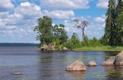 Pequeña ensenada en un lago del bosque Fotos de archivo