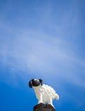 Pequeña estatua de las ovejas imagen de archivo libre de regalías