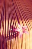 Pequeña flor hermosa en un libro, aroma de la historia Fotos de archivo libres de regalías