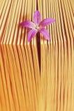 Pequeña flor hermosa en un libro, aroma de la historia Fotografía de archivo libre de regalías