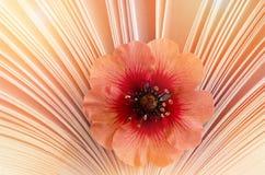 Pequeña flor hermosa en un libro, aroma de la historia Imagenes de archivo