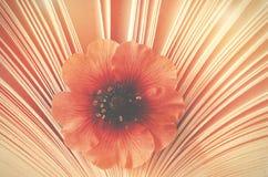 Pequeña flor hermosa en un libro, aroma de la historia Fotografía de archivo