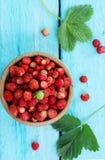 Pequeña fresa salvaje del bosque, visión superior foto de archivo libre de regalías