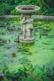 Pequeña fuente del jardín Fotos de archivo libres de regalías