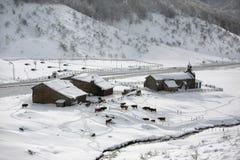 Pequeña granja con nieve Foto de archivo libre de regalías