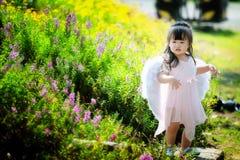 Pequeña hada en campo de flor Fotos de archivo