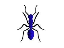 Pequeña hormiga Fotos de archivo libres de regalías