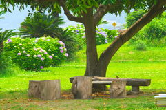 Pequeña huésped del parque Foto de archivo libre de regalías