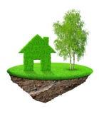 Pequeña isla con la casa verde y el árbol Fotografía de archivo libre de regalías
