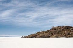 Pequeña isla con los cactus en Salar de Uyuni Fotos de archivo libres de regalías