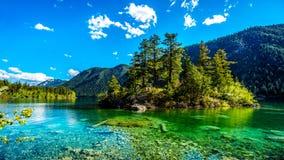 Pequeña isla en el medio de las aguas cristalinas del lago pavilion en el parque provincial del barranco de mármol, Columbia Brit Fotos de archivo libres de regalías