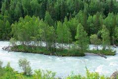 Pequeña isla en el río Foto de archivo