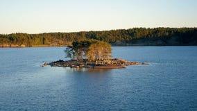 Pequeña isla a la luz de la puesta del sol en el mar cerca de la orilla con un bosque conífero almacen de metraje de vídeo