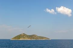 Pequeña isla y un vuelo de la gaviota Fotografía de archivo