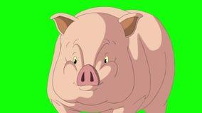 pequeña llave Amarillo-rosada de la croma de las negociaciones del cerdo