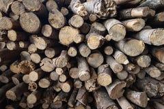Pequeña madera Imagen de archivo