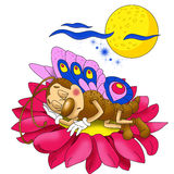 Pequeña mariposa hermosa que duerme en una flor Imagen de archivo libre de regalías
