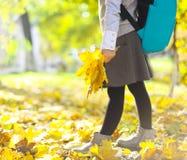 Pequeña muchacha del escolar en el parque del otoño Foto de archivo libre de regalías
