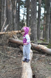 Pequeña muchacha en el bosque de la primavera imágenes de archivo libres de regalías