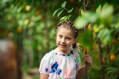 Pequeña muchacha feliz hermosa en vestido colorido en el jardín Lemonarium del limón que escoge los limones maduros frescos en su Fotos de archivo libres de regalías