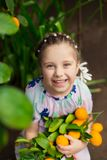 Pequeña muchacha feliz hermosa en vestido colorido en el jardín Lemonarium del limón que escoge los limones maduros frescos en su Foto de archivo