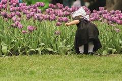 Pequeña muchacha holandesa entre los tulipanes Imagenes de archivo