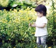 Pequeña muchacha linda que juega en el prado con los dientes de león Imagen de archivo
