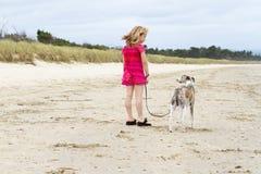 Pequeña muchacha rubia con el whippet en la playa Fotografía de archivo libre de regalías