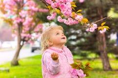 Pequeña muchacha rubia encantadora con los ojos azules que miran la cereza Imágenes de archivo libres de regalías