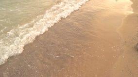 Pequeña onda en la orilla almacen de video