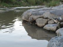 Pequeña orilla del río Fotografía de archivo