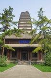 Pequeña pagoda salvaje del ganso de Shaanxi Xi'an Fotografía de archivo