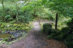 Pequeña pasarela de piedra en quebrada del agujero del revoltijo en West Yorkshire imagen de archivo