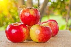 Pequeña pila de manzanas en la tabla de madera en jardín fotografía de archivo libre de regalías