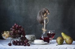 Peque?a rata gris linda en una botella de vino con la fruta y el queso Todav?a vida en estilo del vintage con una rata viva A?o N