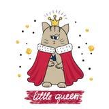 Pequeña reina de la historieta Gato lindo en vestido real Fotografía de archivo libre de regalías