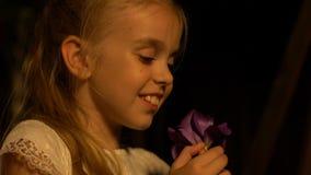 Pequeña señora que juega con la flor bonita que disfruta del olor y del color, momento conmovedor almacen de video