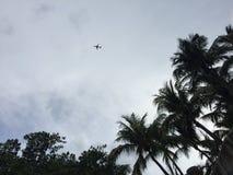 Pequeña silueta del aeroplano en el cielo enmarcado por las palmeras y los cielos nublados fotos de archivo libres de regalías