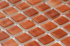 Pequeña teja cuadrada Foto de archivo libre de regalías